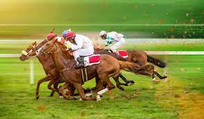 Choosing the Right Horse Racing Strategy